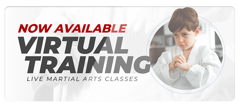 VIRTUALPOPUPSPARK.1.1, Saucon Valley Karate Academy in Hellertown, PA