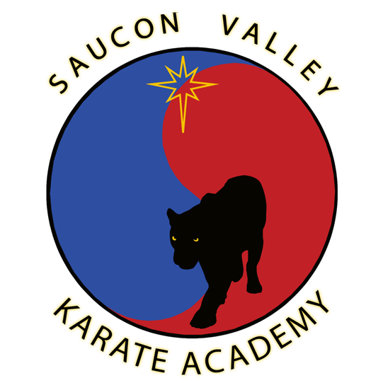 Icon 1, Saucon Valley Karate Academy in Hellertown, PA